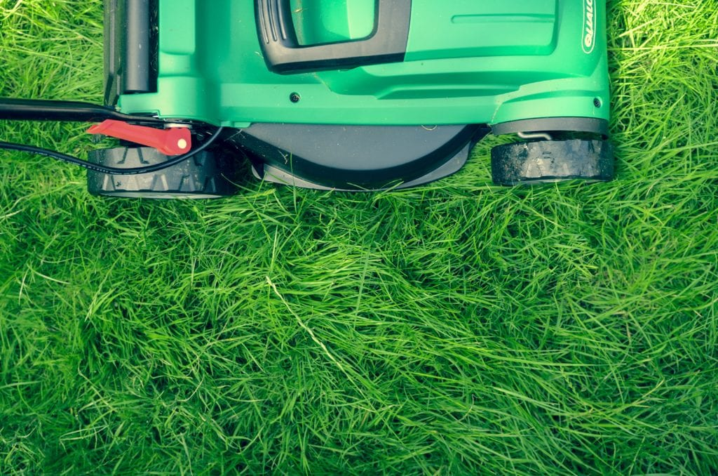 On-demand lawn mowing and landscaping services