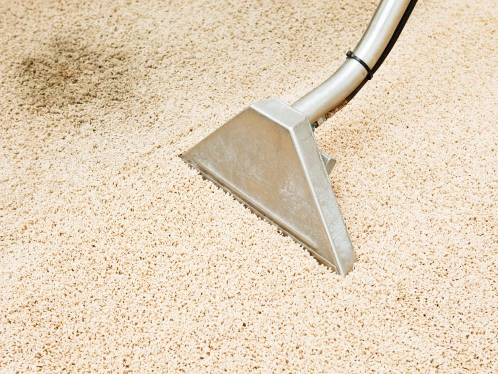 carpet cleaning vomit vacuum steam
