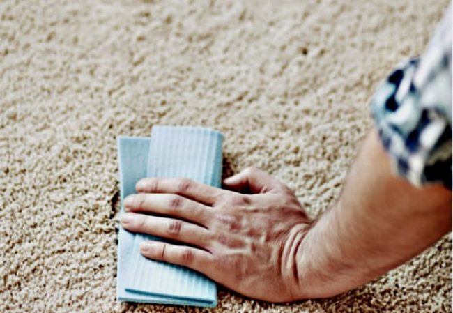 how to clean fresh vomit stain from carpet