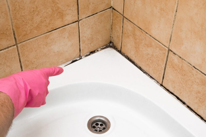 how to get rid of mold in bathrooms