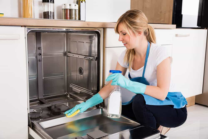 make your own dishwasher cleaning product
